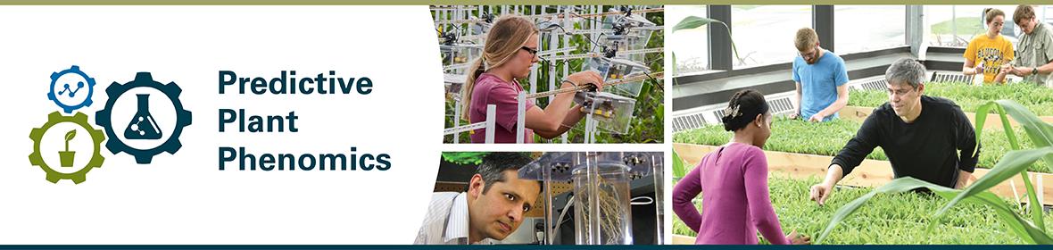 Predictive Plant Phenomics